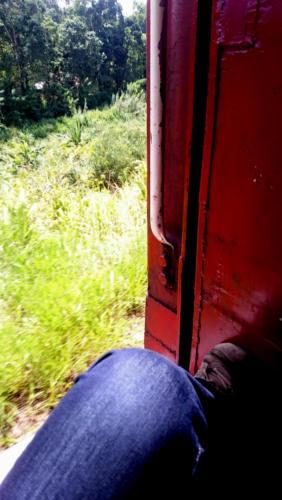 Ma place préférée dans les trains sri lankais : assise à la porte, pour admirer les paysages qui défilent