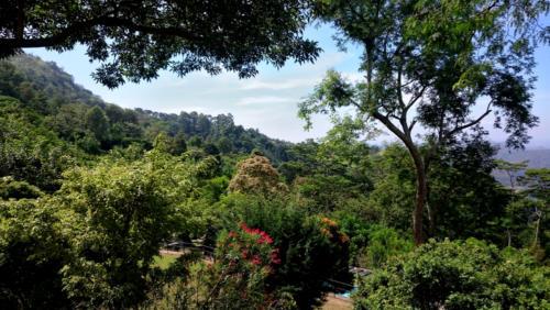 Une nuit à Haputale : superbe vue matinale depuis la terrasse de l'hôtel Melheim Resort and Spa